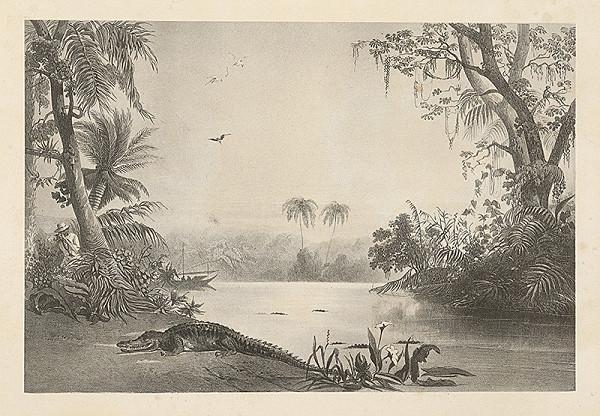 Emanuel Andrássy – Číhanie na krokodíla (Motív z cesty po východnej Indii VIII.)