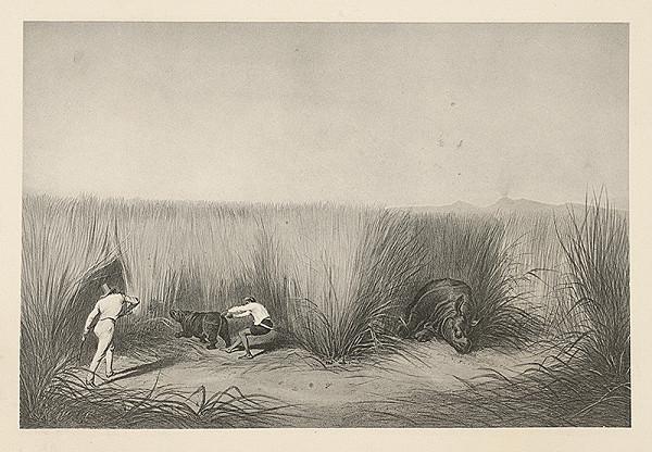 Emanuel Andrássy – Zastrelený nosorožec a jeho o útek sa pokúšajúce mláďa. Thysitu (Motív z cesty po východnej Indii IX.)