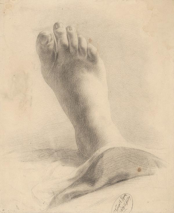Július Krajnik – Noha