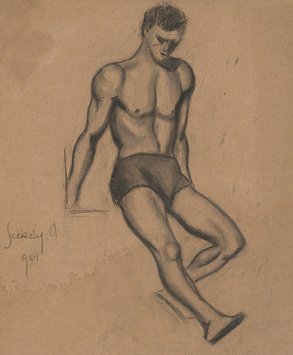 Ivan Anton Székely – Sediaci muž