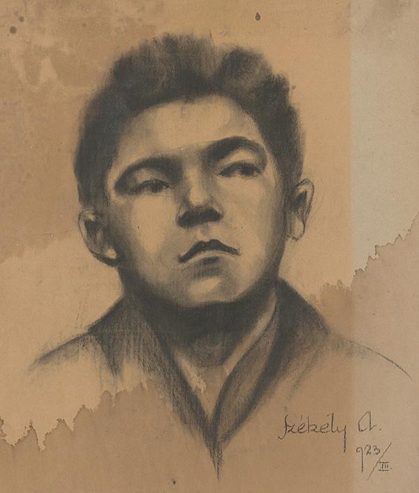 Ivan Anton Székely - Podobizeň chlapca