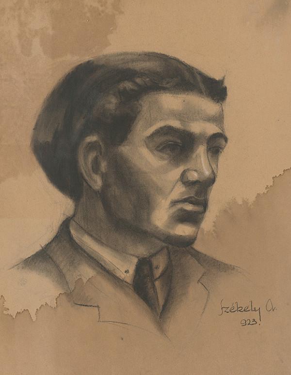 Ivan Anton Székely - Podobizeň muža