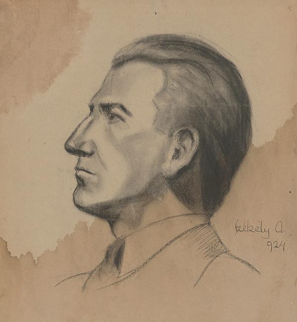 Ivan Anton Székely - Podobizeň muža z profilu