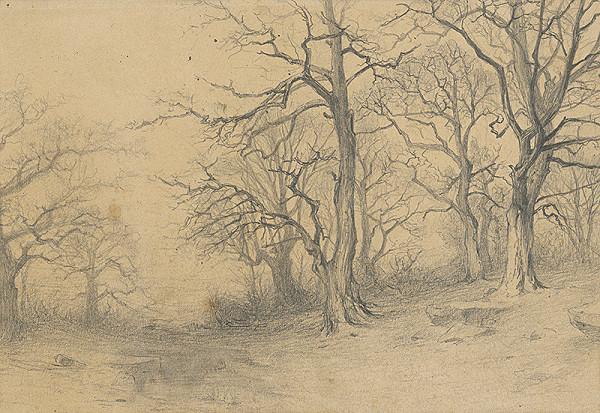 Ľudovít Čordák - Štúdia stromov