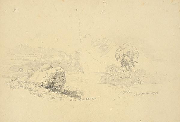 Eugen Wallachy - Štúdia skaly a stromov