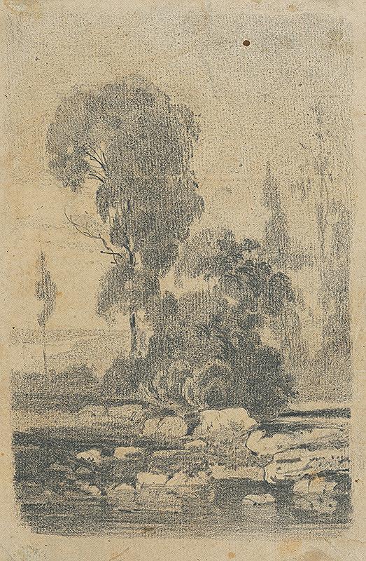 Július Török – Štúdia stromov