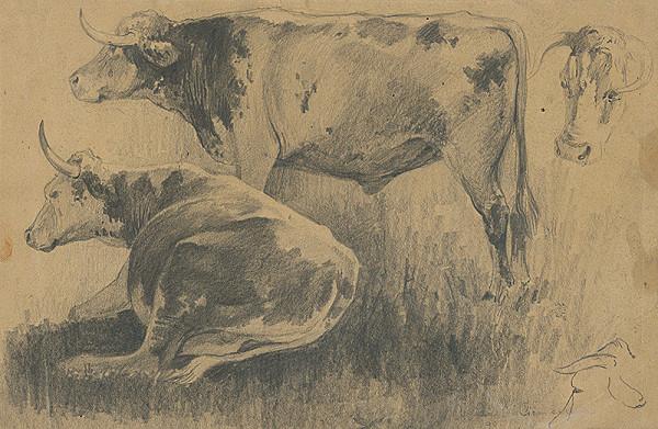 Ľudovít Čordák - Štúdia kráv