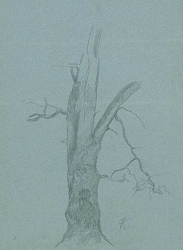 Ferdinand Katona – Štúdia stromu