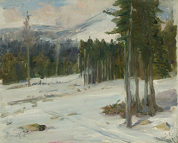 Andor Borúth – Okraj lesa
