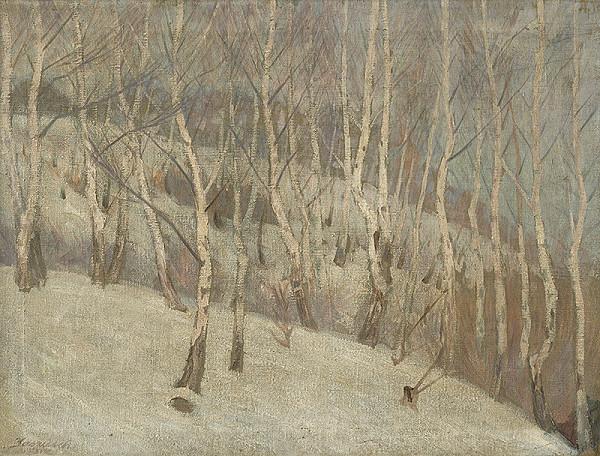 Anton Jasusch - Zimná krajina