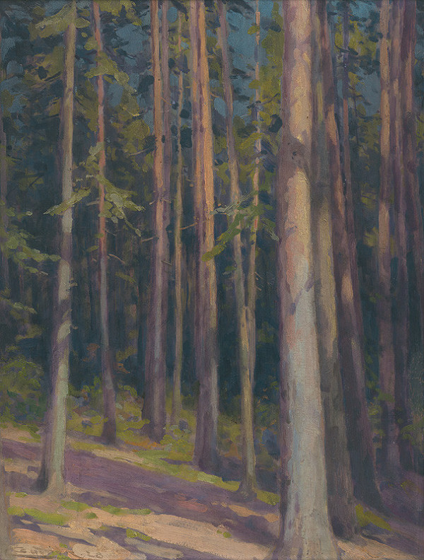 Ľudovít Čordák - Jedľový les