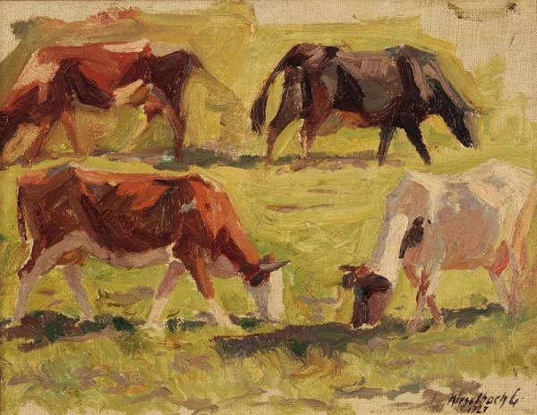Gejza Kieselbach - Štúdia kráv