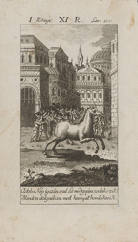 Stredoeurópsky grafik z 18. storočia – Hlúposť