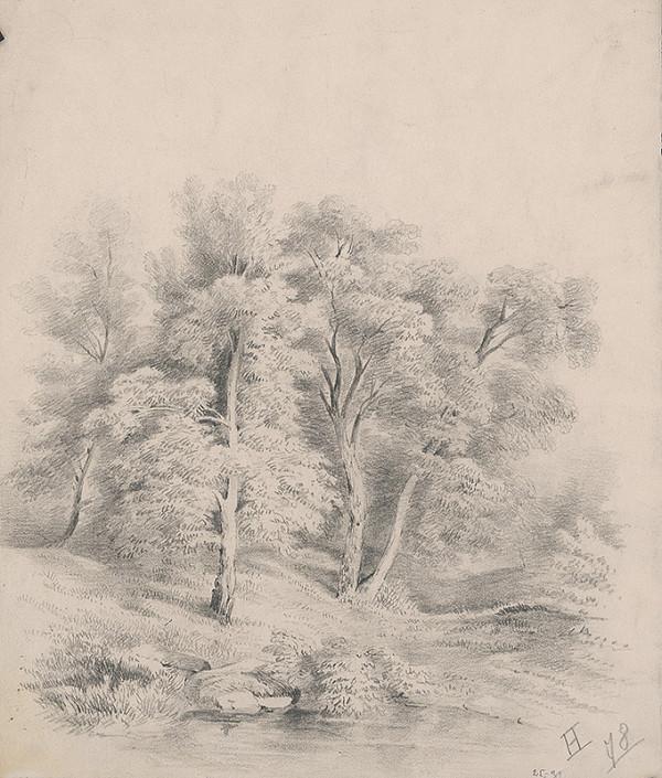 Stredoeurópsky grafik z 19. storočia – Krajinka I.