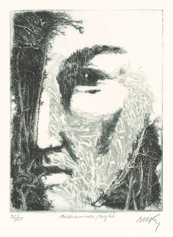 Mikuláš Kravjanský – Svätojánska noc
