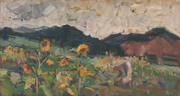 Mária Medvecká - Slnečnice v poli
