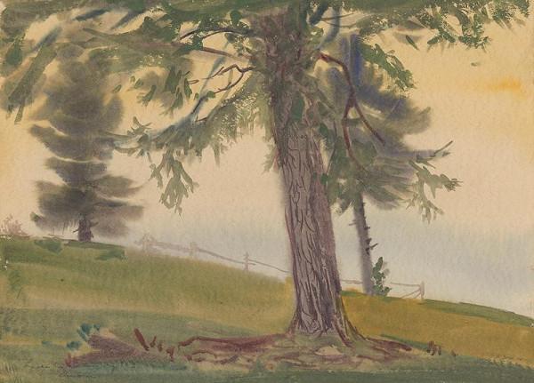 Ladislav Čemický – Osamelé stromy