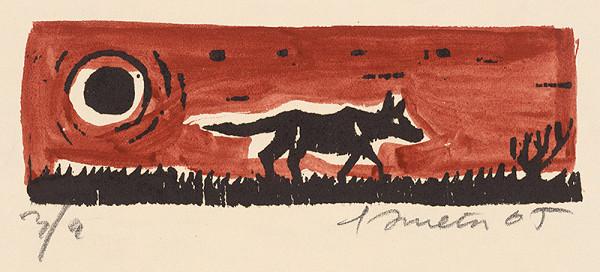 Ernest Zmeták – Vlk