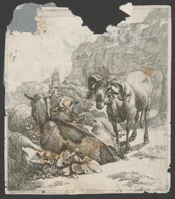 Johann Heinrich Roos – Baran