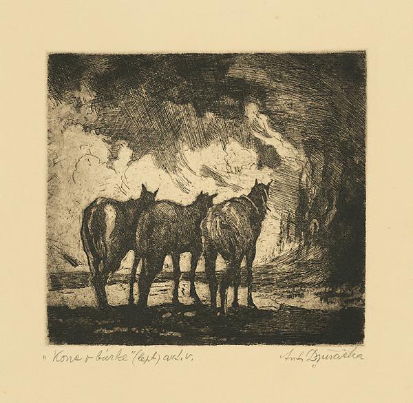 Anton Djuračka – Kone v búrke