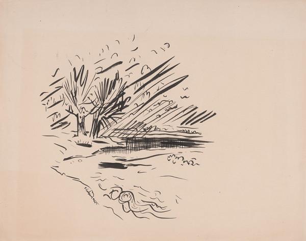 Arnold Peter Weisz-Kubínčan – Krajina s riekou