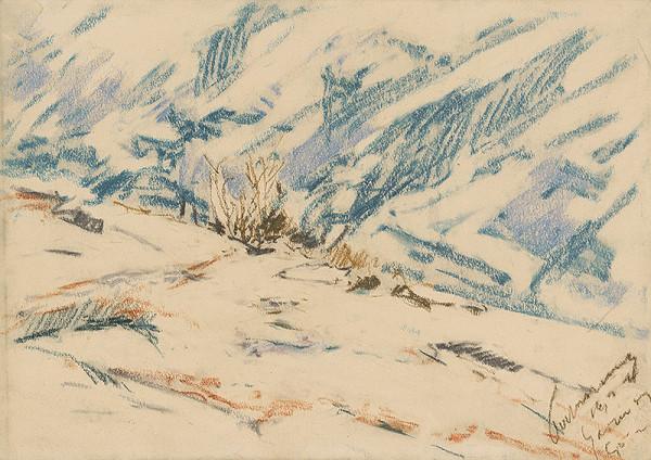 Zolo Palugyay - Snowy Mountainside