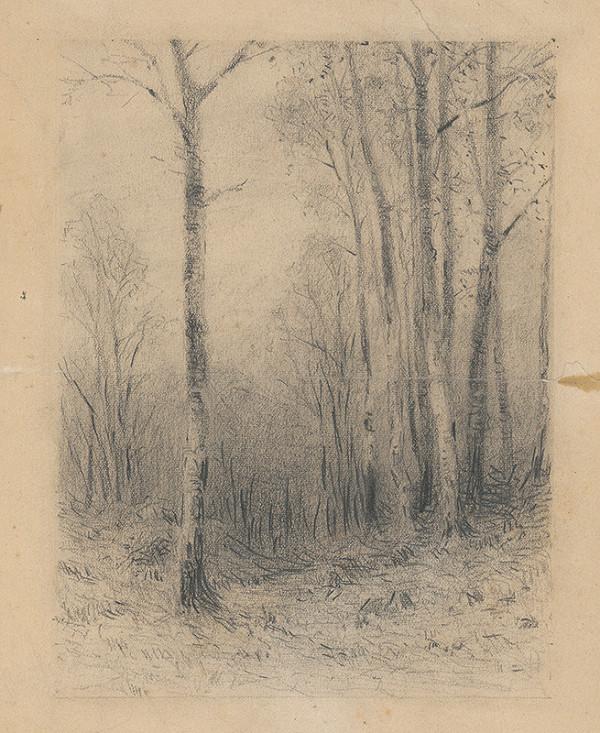 Ľudovít Čordák – Study of Trees