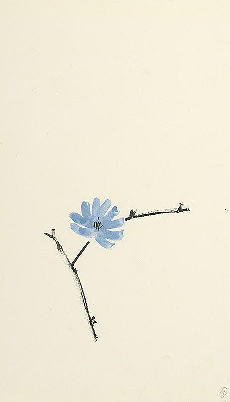Viera Kraicová - Blue Flower - 8.