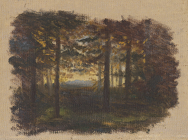 Jan Novopacký – In the Woods before Sunset