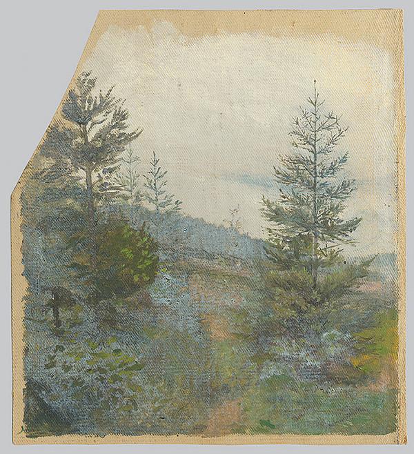 Jan Novopacký - Spruces