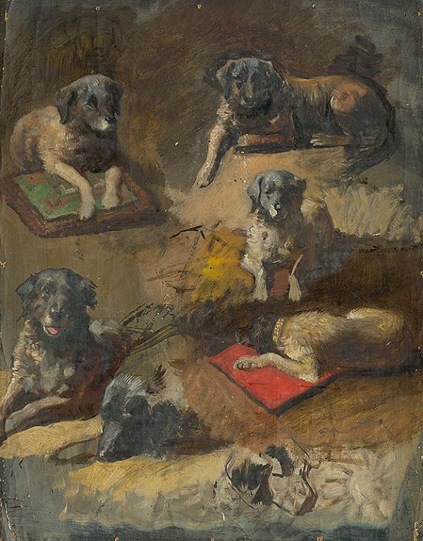 Jan Novopacký – Study of a Dog