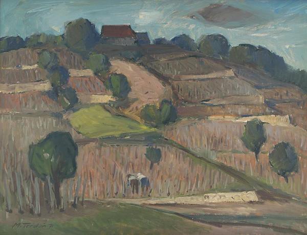 Martin Tvrdoň – Small Vineyards on a Hill