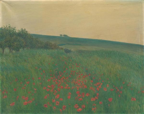František Kaván – Red Poppies