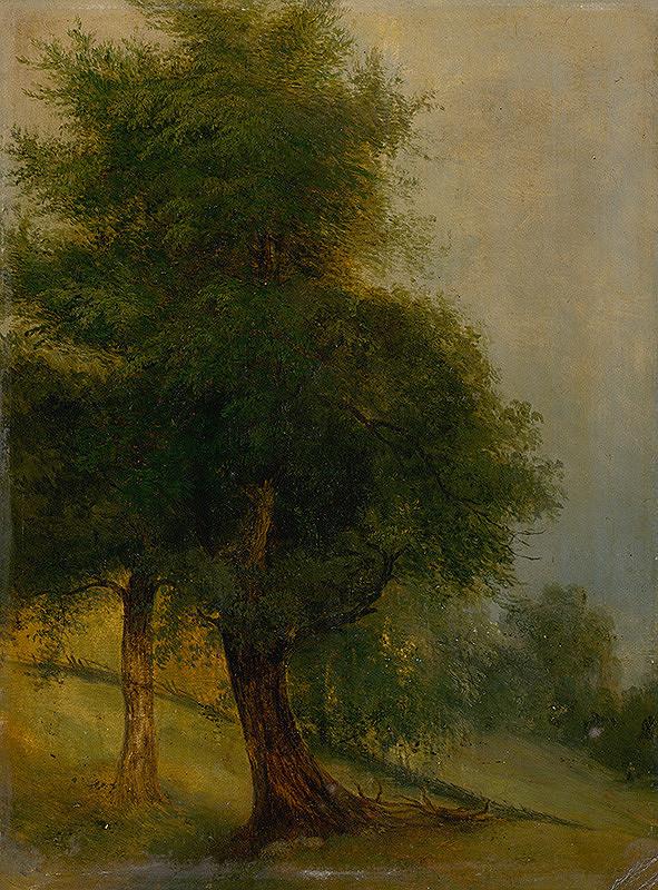 Jozef Božetech Klemens – Trees on a Slope