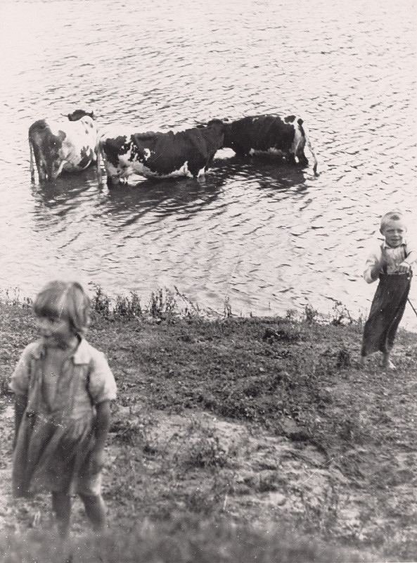 Irena Blühová – The Youngest Cowherd; The Youngest Little Herdsman of Cows
