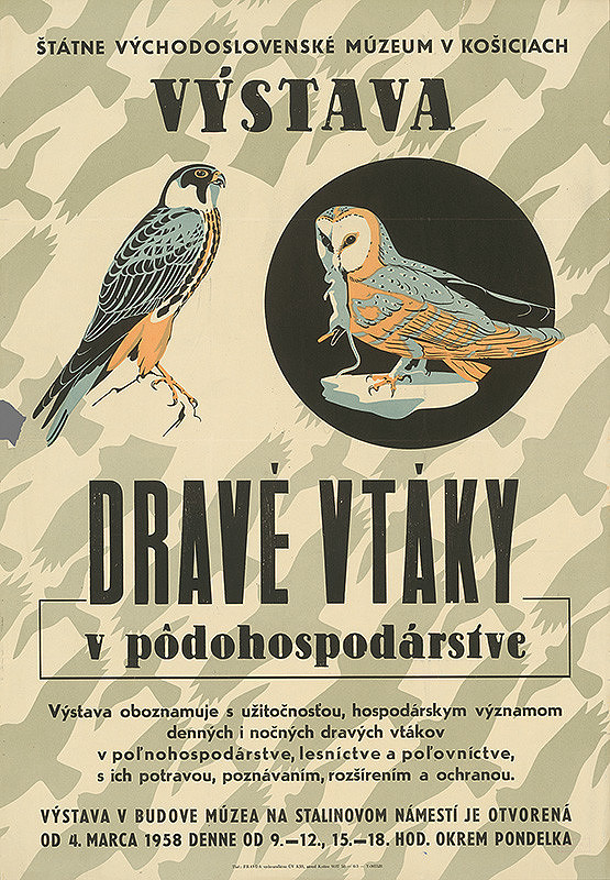 Slovenský autor – Výstava - Dravé vtáky v poľnohospodárstve