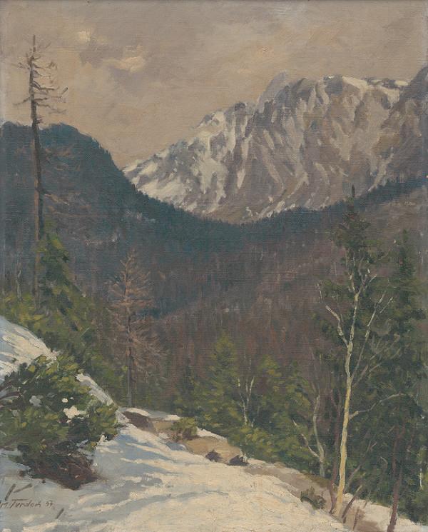 Martin Tvrdoň - Studenovodská dolina