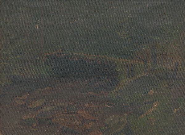 Ferdinand Katona – Lesný potok