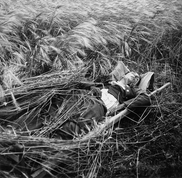 Jozef Cincík – Šumenie klasov spieva pohrebnú pieseň padlému hrdinovi