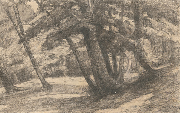 Ľudovít Čordák – Interiér lesa