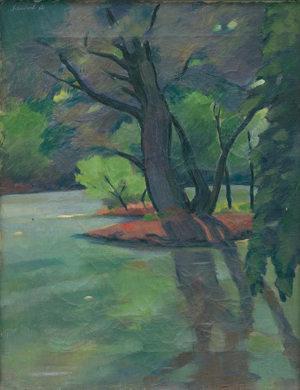 Július Schubert - Mŕtve rameno Dunaja, 1921