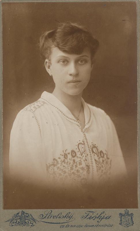 Alexander Streliský - Slečna s vyšívanou blúzkou